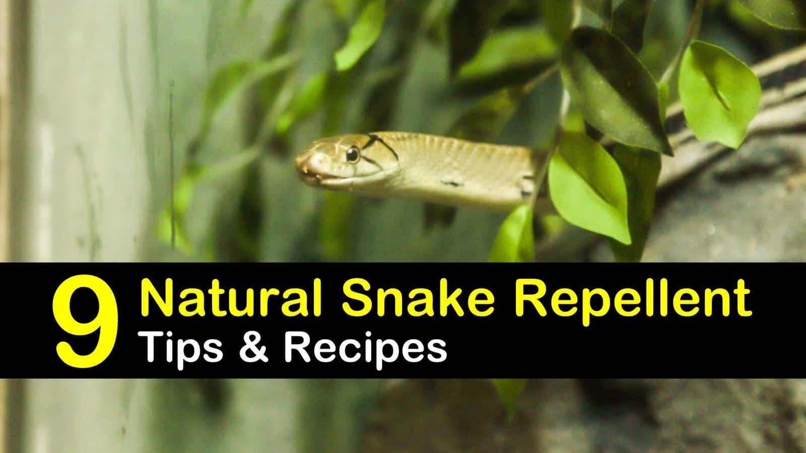 natural snake repellent titleimg1