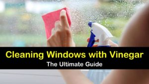 cleaning windows with vinegar titleimg1