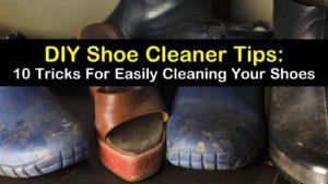 DIY shoe cleaner titleimg1