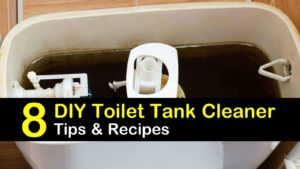 how to clean toilet tank titleimg1