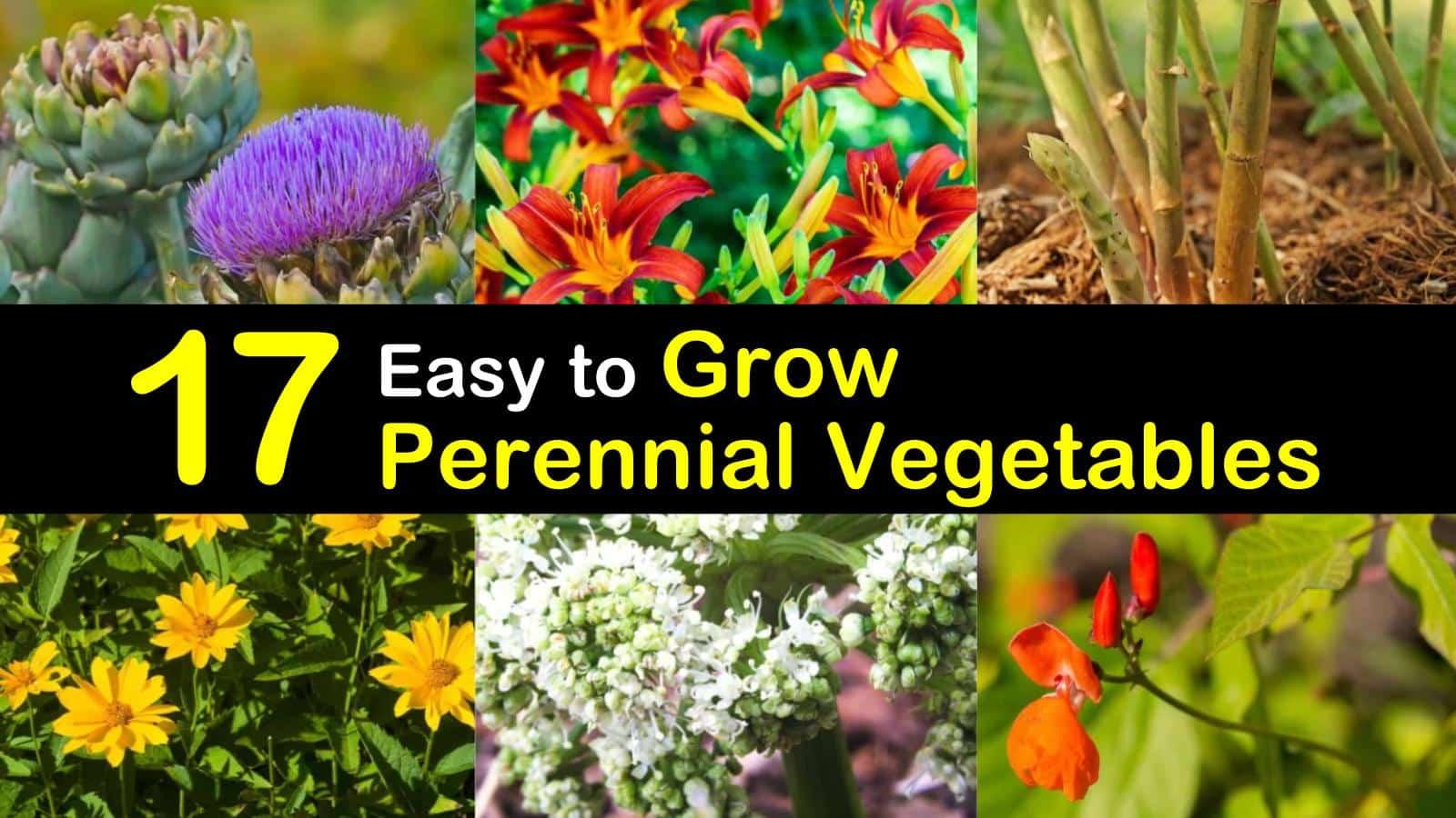 perennial vegetables titleimg1