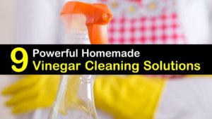 vinegar cleaning solutions titleimg1