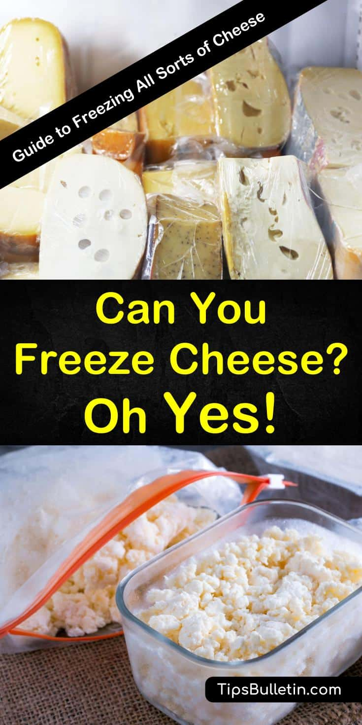 Can you freeze cheese? Learn how to freeze cheese to extend its shelf life. With tips and for freezing all kinds of cheese, including hard, semi-hard, soft cheese and cheese slices, you can keep your cheese for longer and still use it in all your favorite recipes. #freeze #cheese #howto #frozen