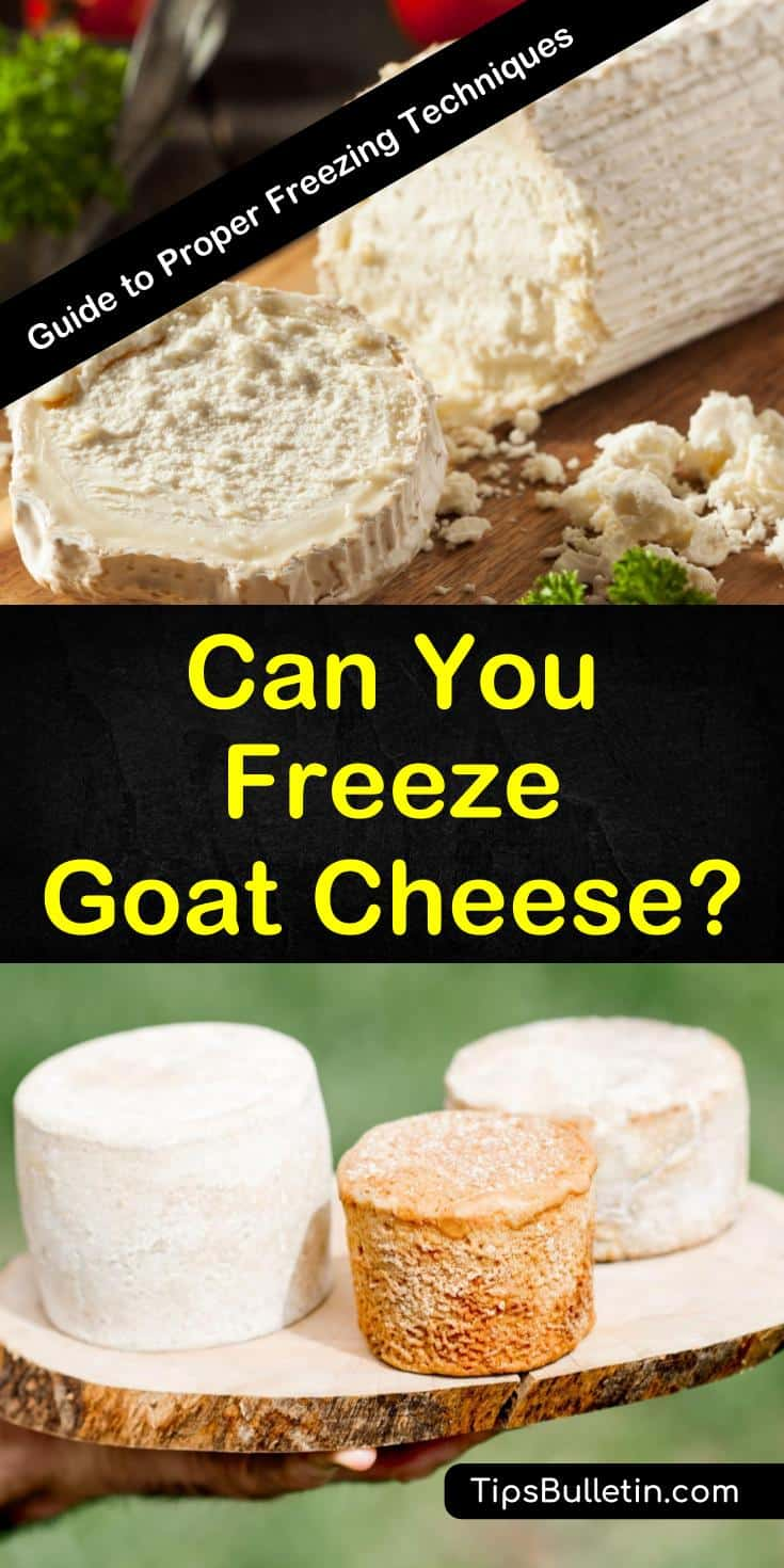 Can you freeze goat cheese? You bet! Our guide shows you how to freeze solid and spreadable goat cheese so you can enjoy its unique flavor and health benefits all year long. Discover how easy freezing goat cheese can be! #chevre #freeze #goatcheese #freezingcheese