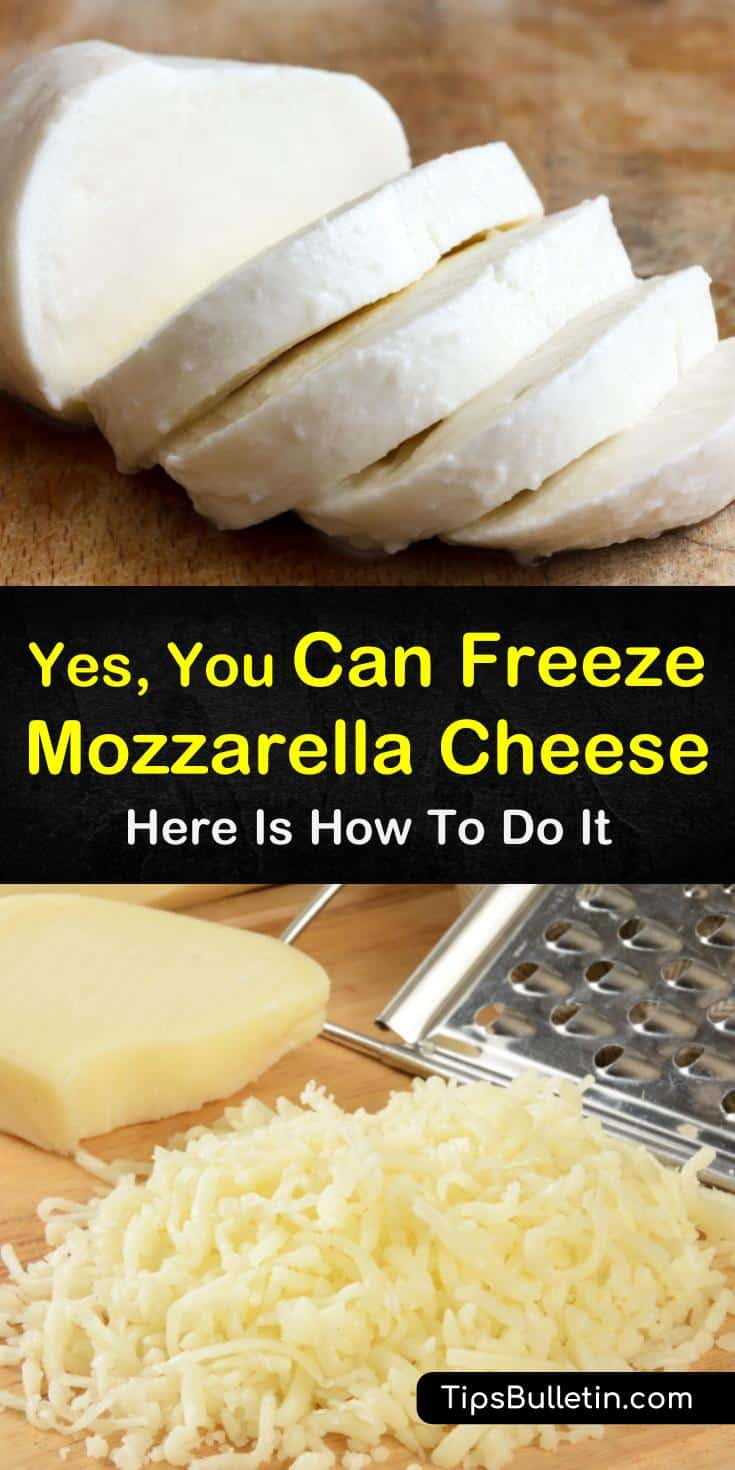 Can you freeze mozzarella cheese in slices, in a block, or shredded? Yes, our guide will help you fill your freezers with frozen cheese and will keep you fed and happy all year long. #mozzarella #freezing #cheese