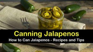 canning jalapenos titleimg1