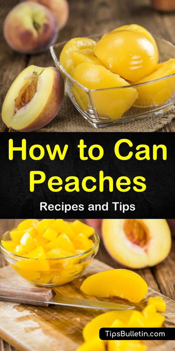 Discover how to use an instant pot for canning peaches in jars in water with no sugar or in juice. Our guide for beginners will show you how to have fresh peaches year round. With cinnamon and butter, your preserves will turn into tasty pie fillings in no time! #preserves #peaches #canning