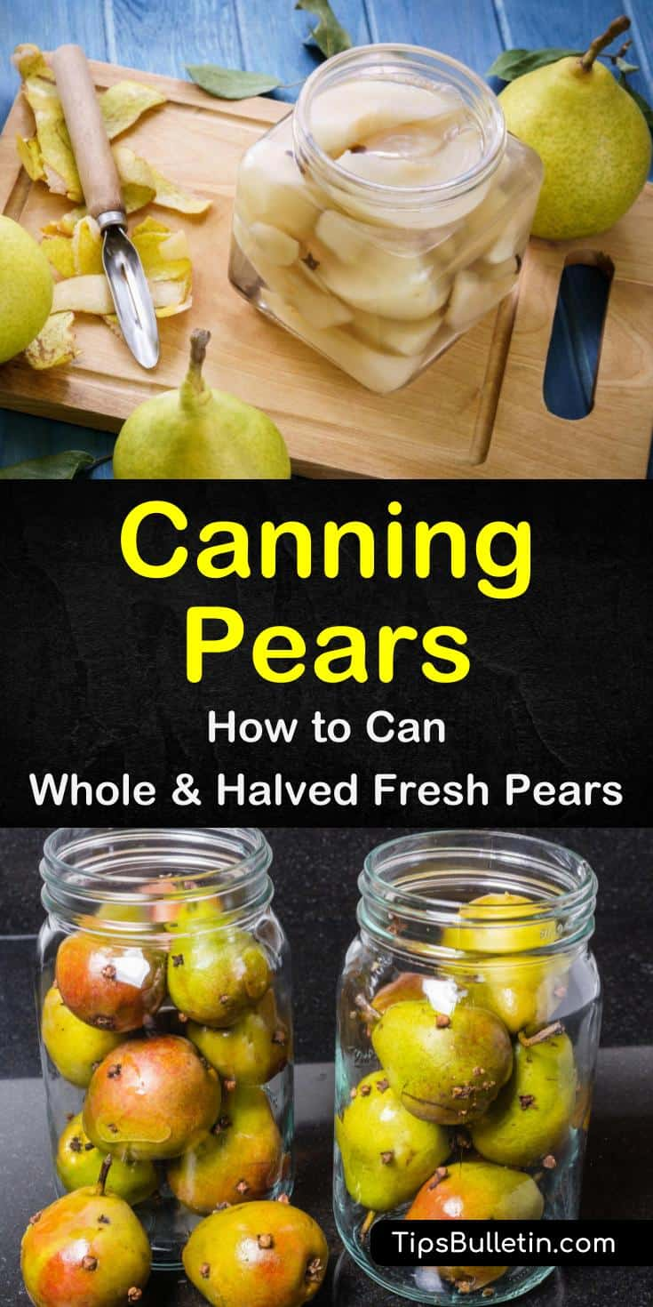 We all know that pears taste better fresh but sometimes we want to eat them in the colder months.  Learn how canning pears can help you have delicious fruit all year. #canningpears #preservefood
