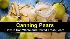 canning pears titleimg1