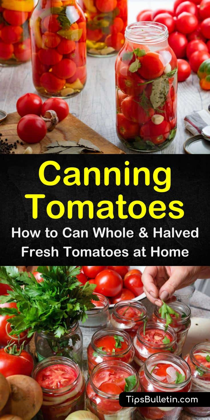 Discover the secrets for canning tomatoes. The simple process is great for beginners without a canner. You can make easy recipes for spaghetti sauce and stew with the tomatoes you can and other simple recipes. #tomatoes #canning