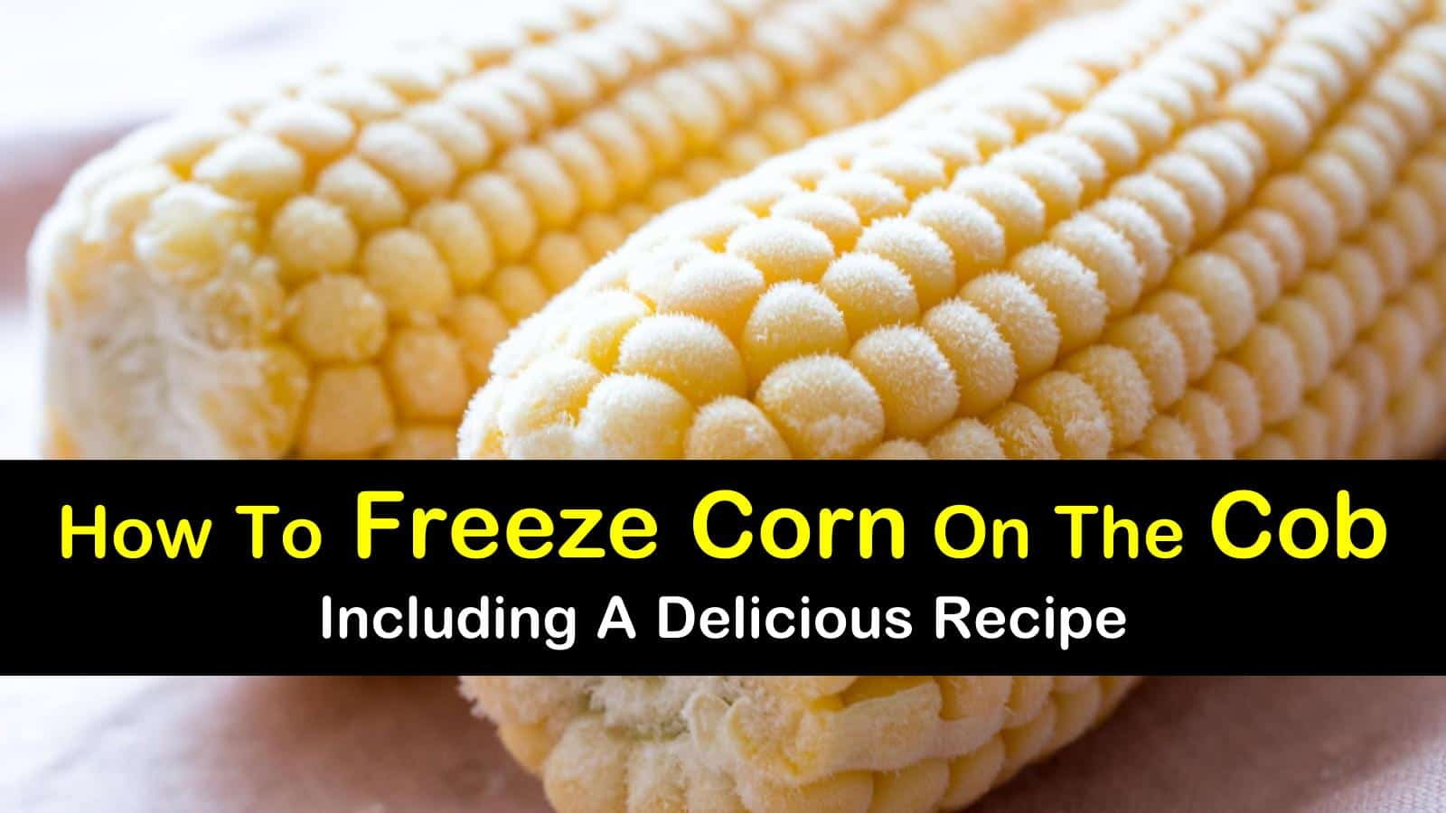 how to freeze corn on the cob titleimg1