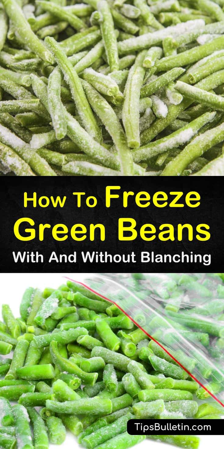 Find out how to freeze green beans with and without blanching. Our guide gives you step by step instructions to take your beans from garden soil to the freezer to your plate and keep them as delicious as the day they were picked! #homepreservation #greenbeans #freezing