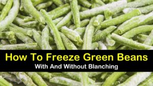 how to freeze green beans titleimg1