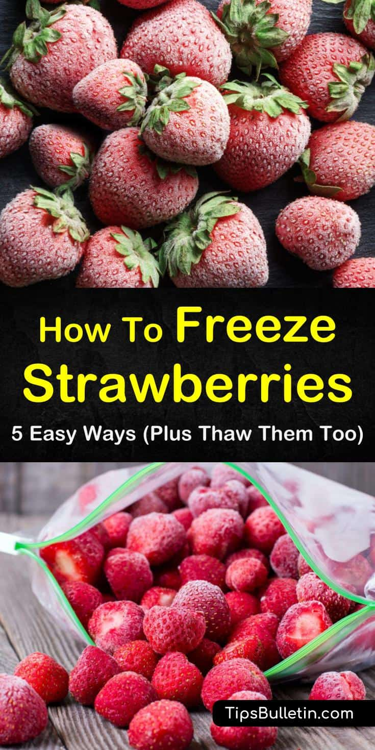 Discover how to freeze strawberries with sugar and without. Our guide gives you simple step by step instructions on how to store fresh fruit for smoothies, desserts, and healthy meal options! #freezing #strawberries