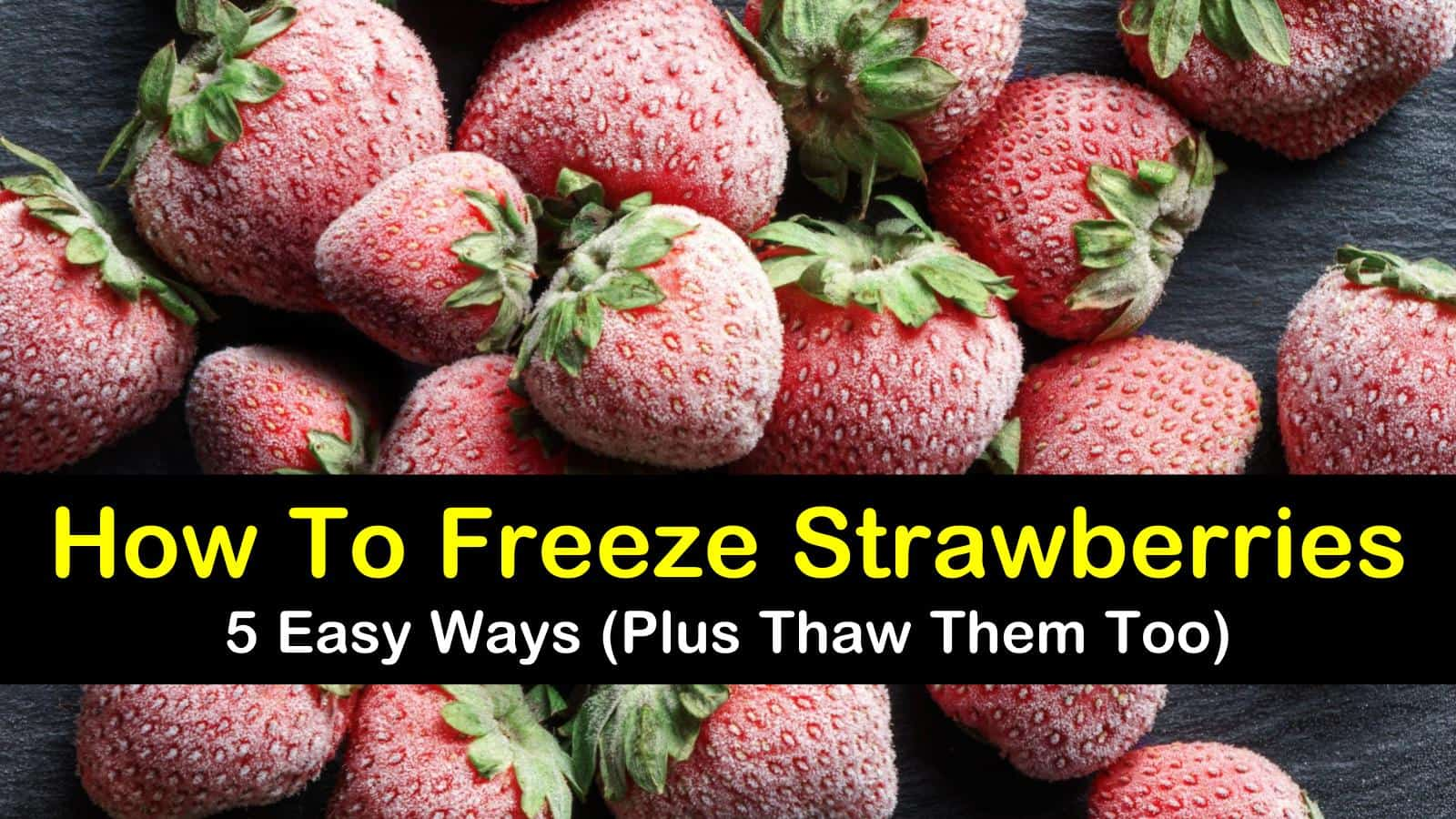 how to freeze strawberries titleimg1