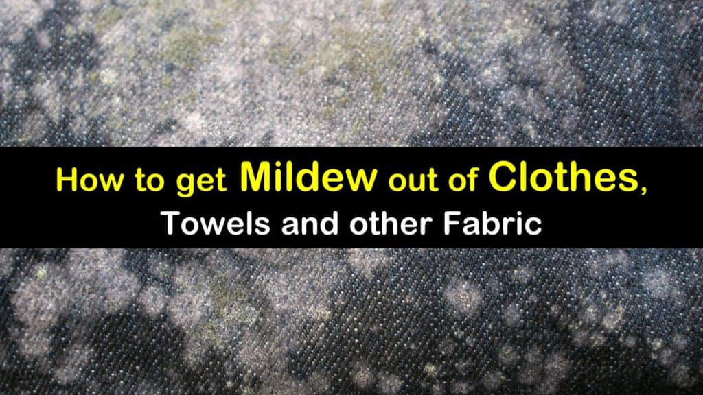 How To Get Mildew Out Of Clothes Towels And Other Fabric