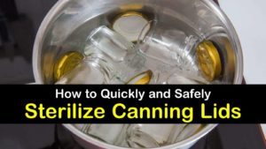how to sterilize canning lids titleimg1