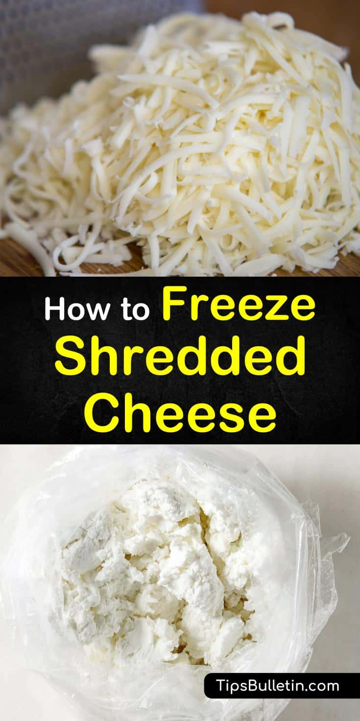 Yes, you can freeze shredded cheese. Learn the best methods for freezing, storing, and thawing shredded cheeses. These tips and tricks will show you the best strategies based on the type of cheese, its size, and condition. #freeze #shredded #cheese