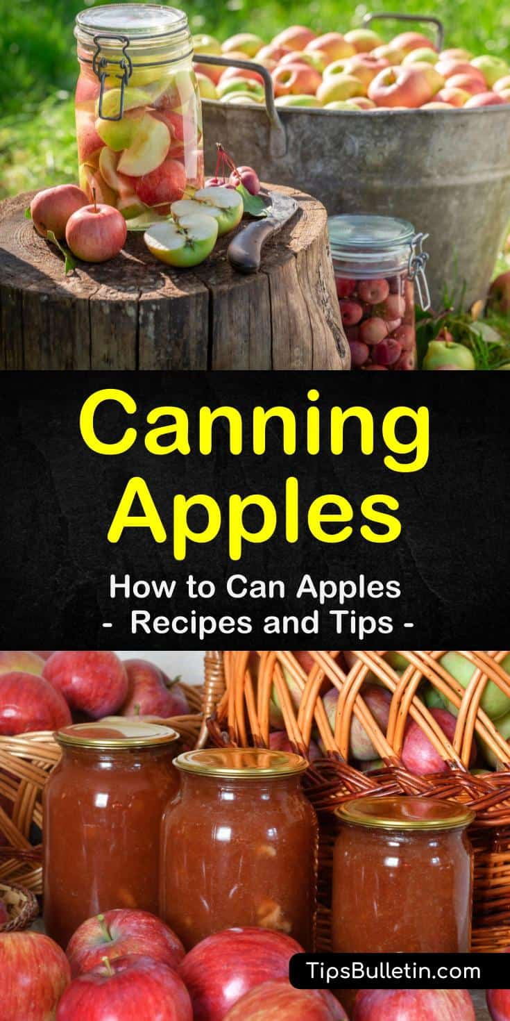 Discover how to can apples so you can enjoy these delicious, sweet treats all year long. Canning apples is an easy process that will allow you to make all kinds of delicious treats like pie filling, apple butter, applesauce, and apple juice. #canapples #canningapples #preserveappleswithcanning