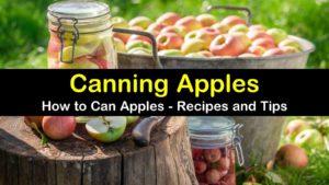 canning apples titleimg1