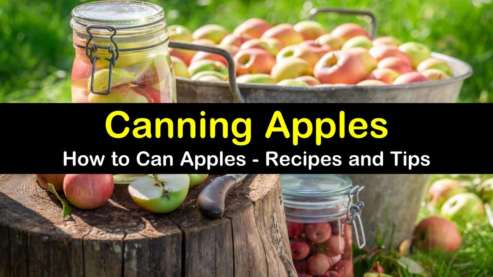 canning apples titleimg1