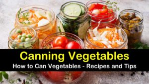 canning vegetables titleimg1