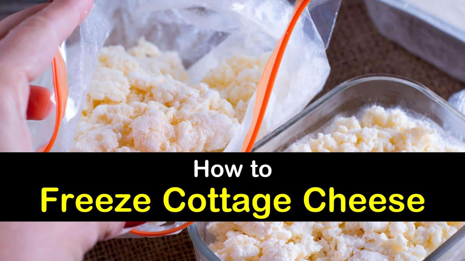 can you freeze cottage cheese titleimg1