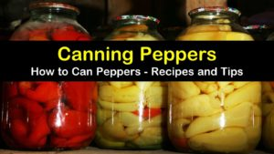 canning peppers titleimg1