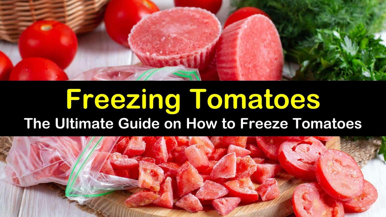 freezing tomatoes titleimg1