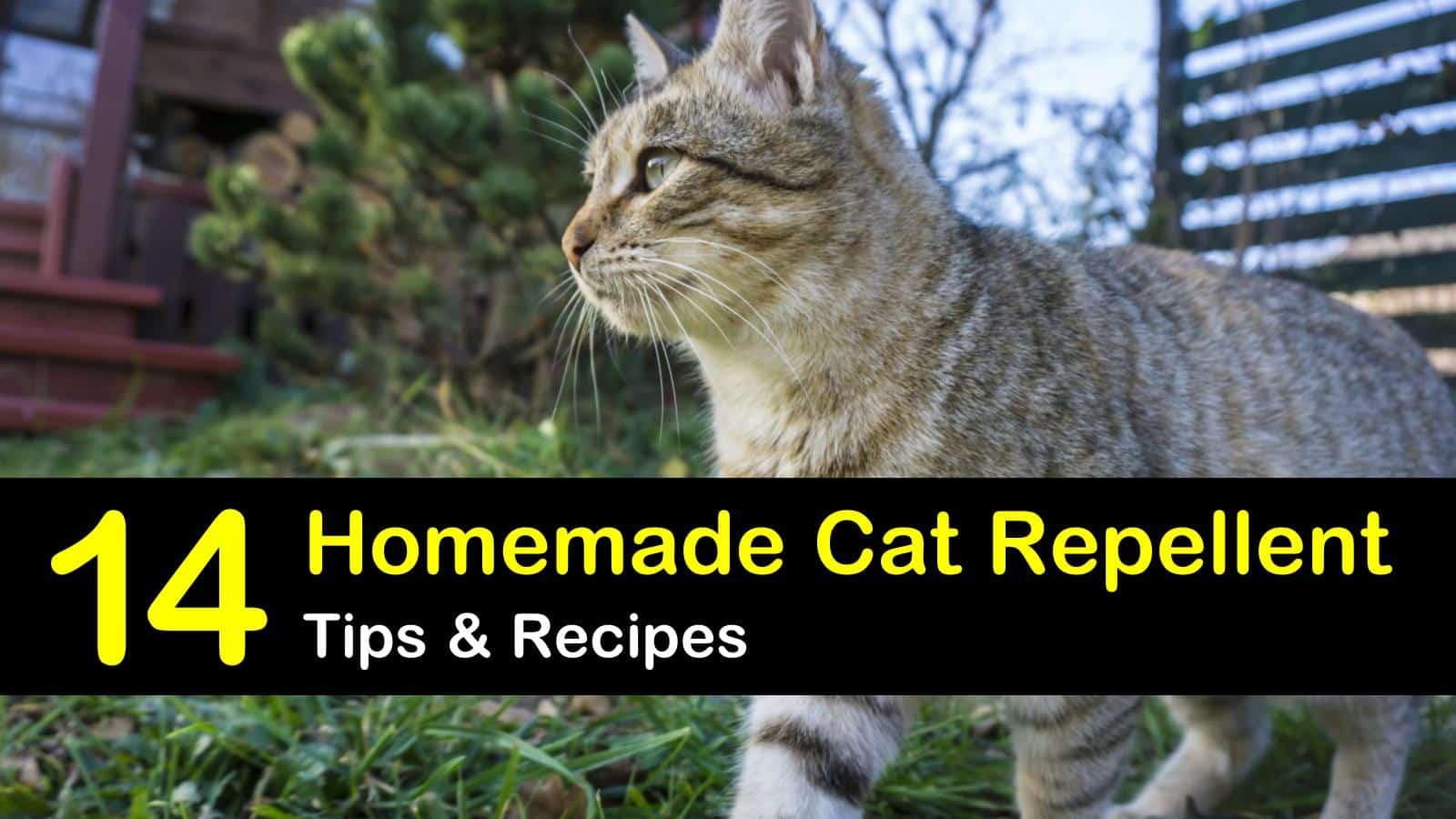 homemade cat repellent titleimg1