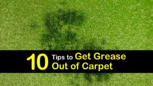 how to get grease out of carpet titleimg1