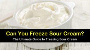 can you freeze sour cream titleimg1