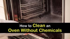how to clean an oven without chemicals titleimg1