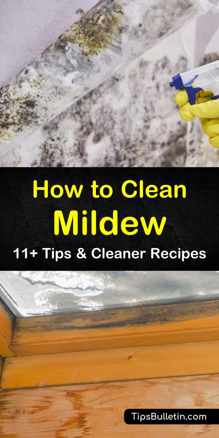 While you may be able to prevent mold by using a dehumidifier, there may be times when that is not enough. We've got cleaning solutions for removing mildew stains and cleaning moldy areas using white vinegar, warm water, chlorine bleach, and hydrogen peroxide. #howtocleanmildew #mildew #cleanmildew