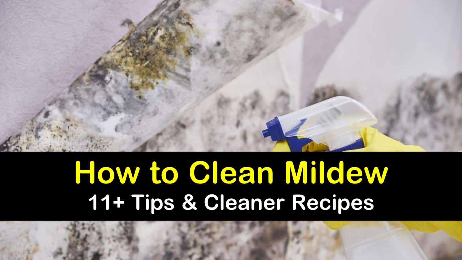 how to clean mildew titleimg1