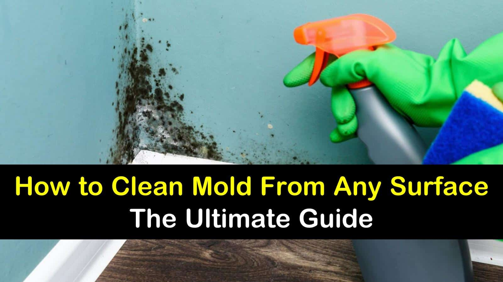 how to clean mold titleimg1