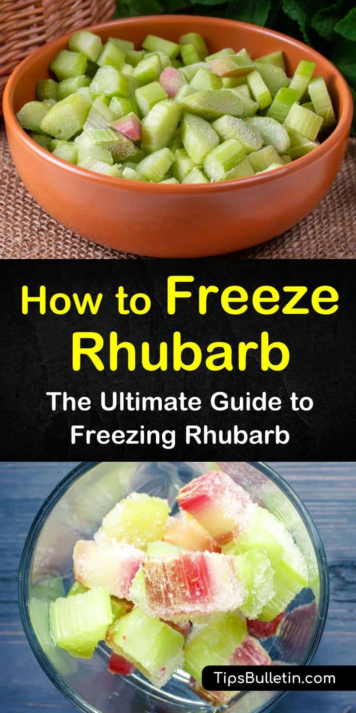 Learn how to freeze rhubarb using the dry pack method for pie fillings and rhubarb cakes. Find out how to make sugar water to prepare rhubarb in syrup for use as freezer jam and sauce. Tickle your tastebuds with an amazing recipe for rhubarb crumble. #freeze #rhubarb #freezingrhubarb
