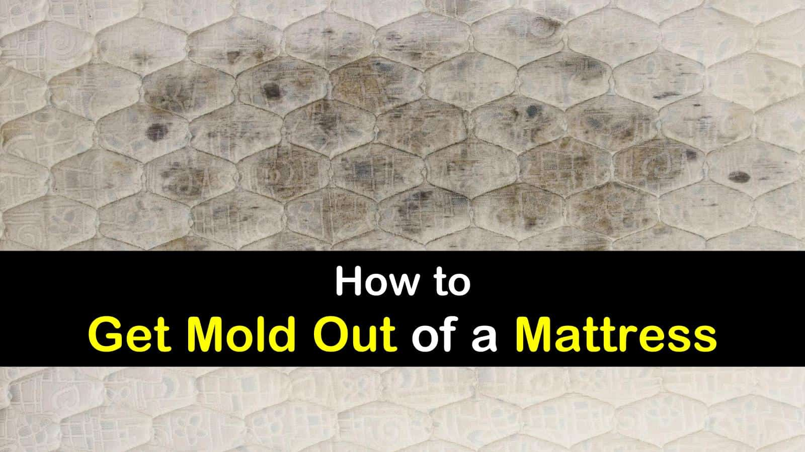 how to get mold out of a mattress titleimg1