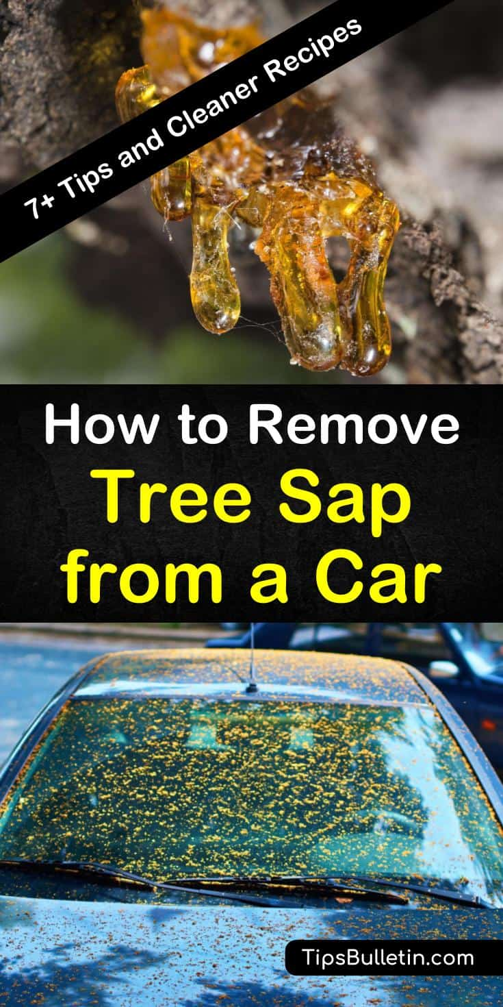 Check out our cleaning tips and recipes for removing tree sap from vehicles. You can even remove sap from the car window using these tips. Remove sticky tree sap using items such as fingernail polish and hand sanitizer. #removesapfromcar #sapremover #sapcleaner