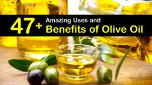 uses and benefits of olive oil titleimg1