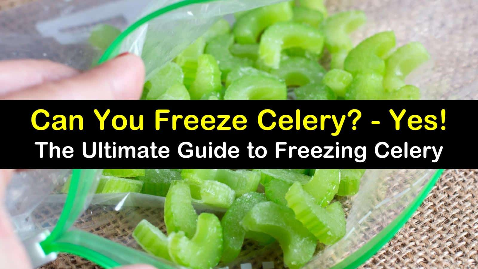 can you freeze celery titleimg1