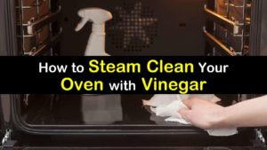 clean an oven with vinegar steam titleimg1