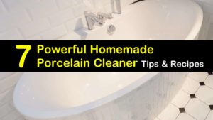 homemade porcelain cleaner titleimg1