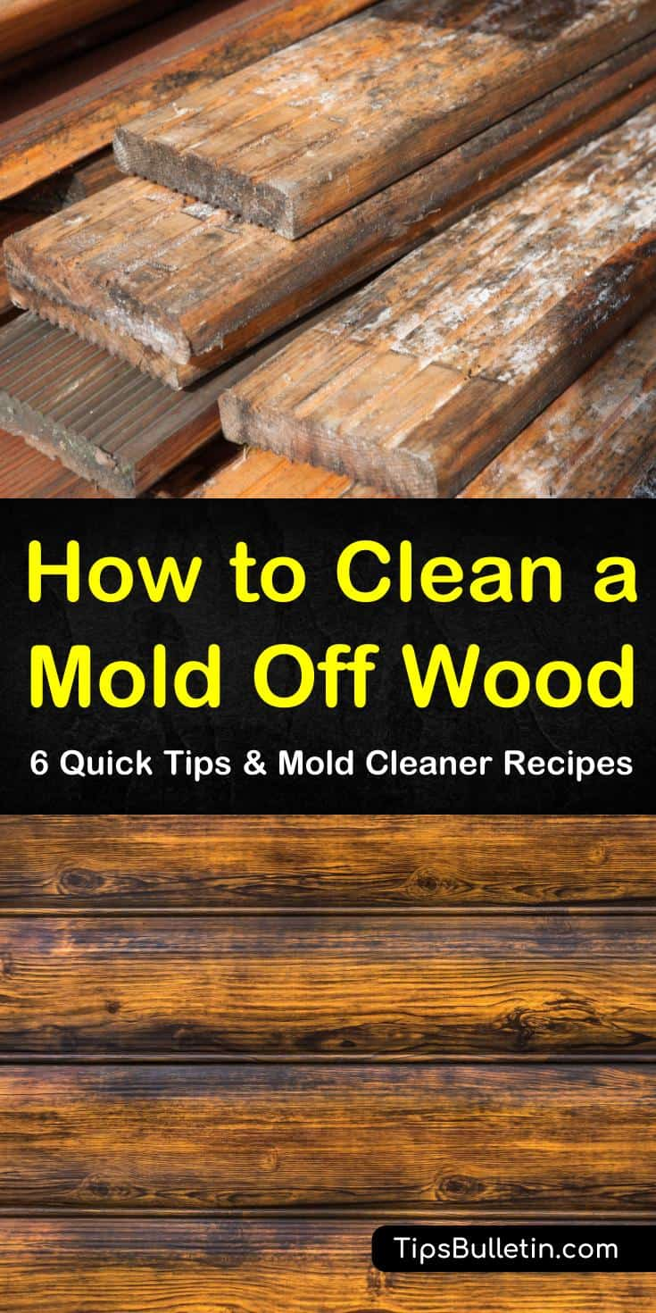 If you have a mold problem, let us show you how easy it is to use common household items to kill mold. Whether you have black mold growing in your drywall and studs or mold growth in your shower, cleaning mold doesn't have to be hard. #getridofmoldonwood #cleaningmoldfromwood #cleanmold #wood