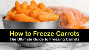 how to freeze carrots titleimg1
