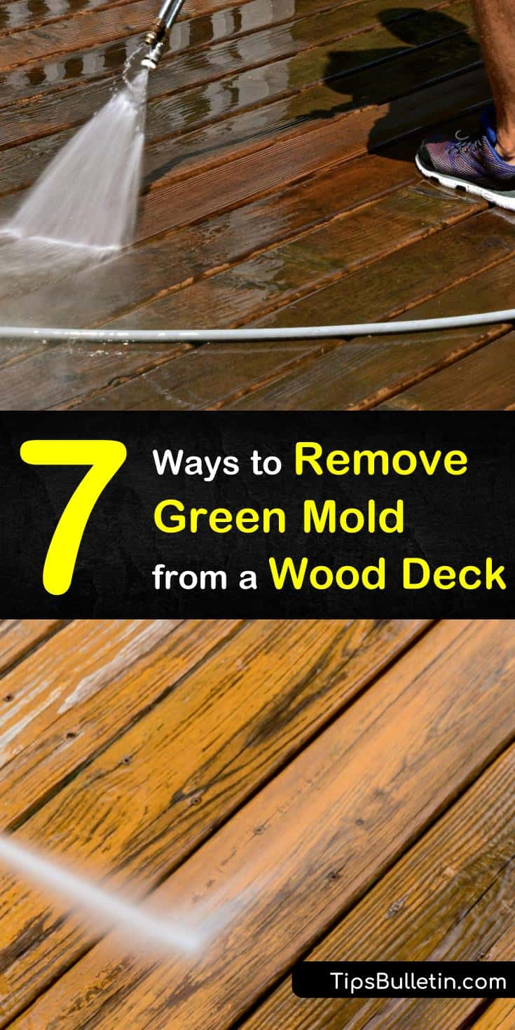 7 Ways To Remove Green Mold From A Wood Deck