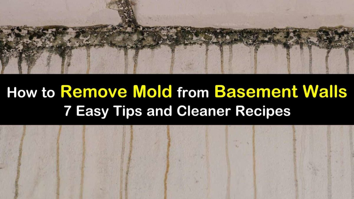 7 Quick Ways To Remove Mold From Basement Walls