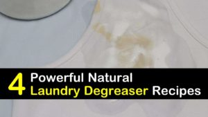 laundry degreaser titleimg1