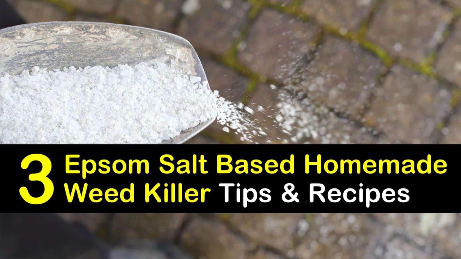 epsom salt based homemade weed killer titleimg1