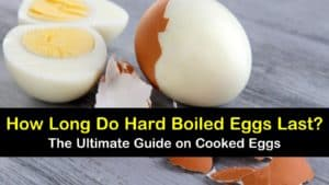 how long do hard boiled eggs last titleimg1